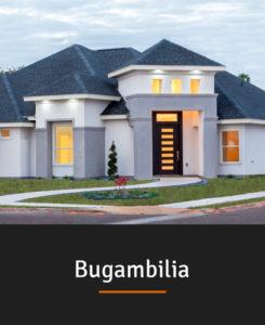 0-Bugambilia-b