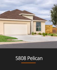 portada-5808-pelican2